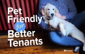 Pet Friendly Rentals Means Better Tenants